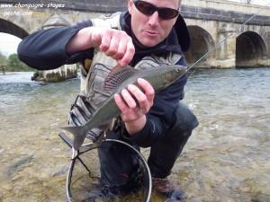 ombre www 300x225 Séjours, stages pêche en France et voyage à létranger de pêche