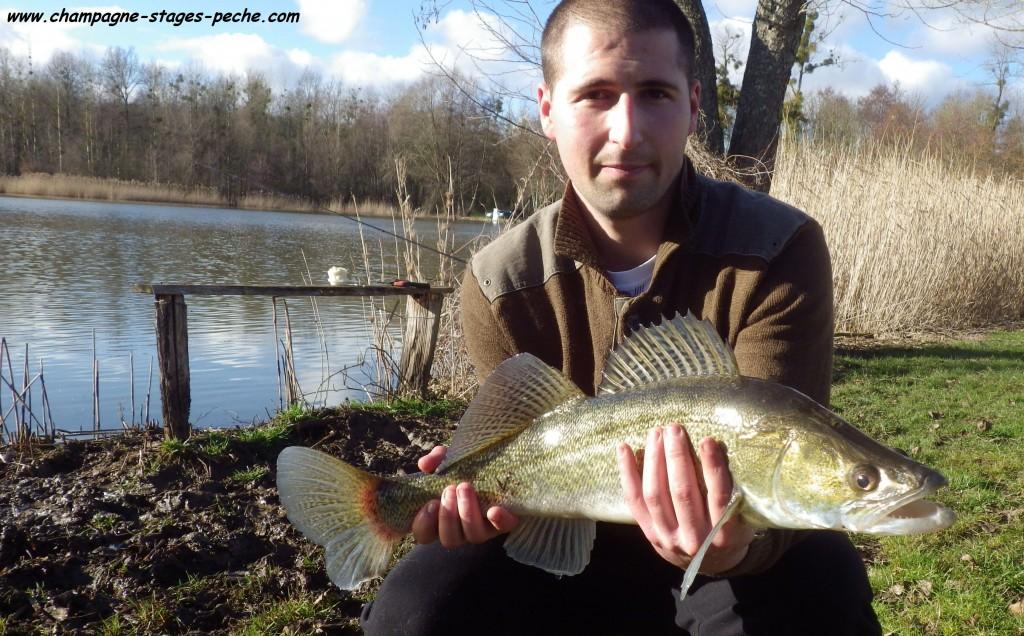 Tristan S80 1024x636 Au Domaine du grand étang