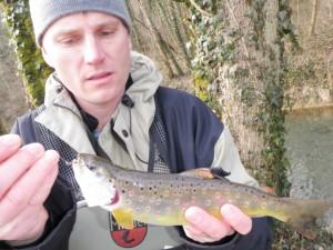 vairon mort 300x225 Pêches traditionnelles de la truite