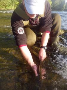 IMGP1513 225x300 Stage pêche mouche noyée