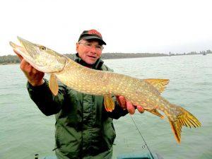 14741754 887565751378785 1139286702 n 300x225 Sortie de pêche en zone hivers au lac de Madine