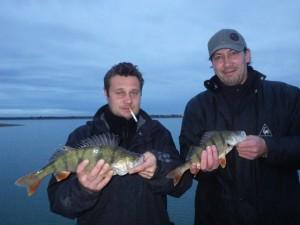 IMGP1672 300x225 Séjour de pêche au Lac du Der Chantecoq