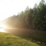P7020488 150x150 Moment de pêche