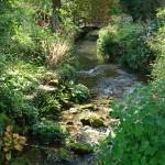 riviere DSC00773 Copie 150x150 Moment de pêche