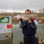 IMG 1040 150x150 Au Domaine du grand étang