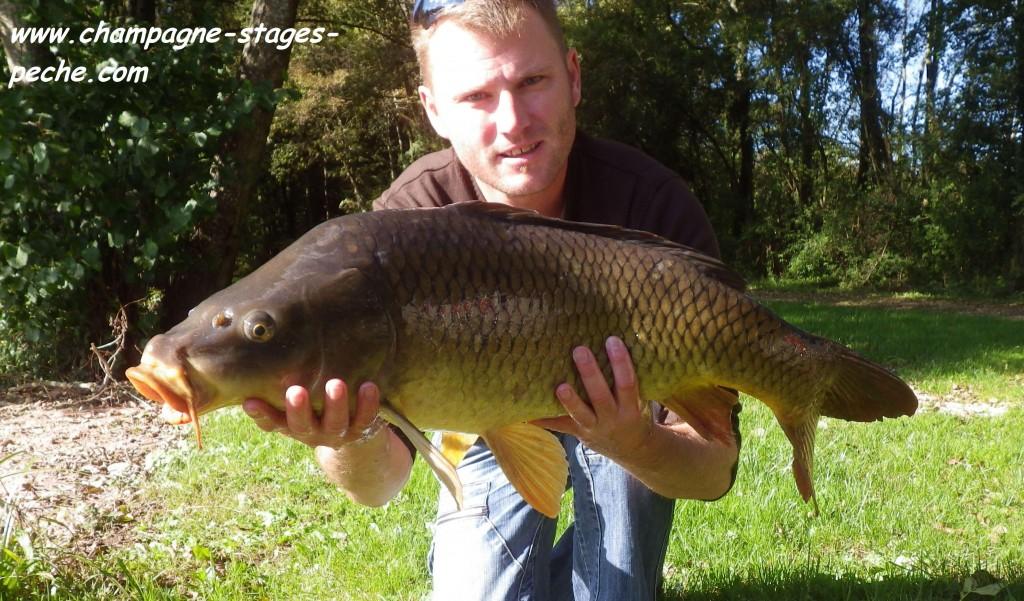 carpe www 1024x601 Au Domaine du grand étang