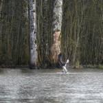unnamed 3 150x150 Au Domaine du grand étang