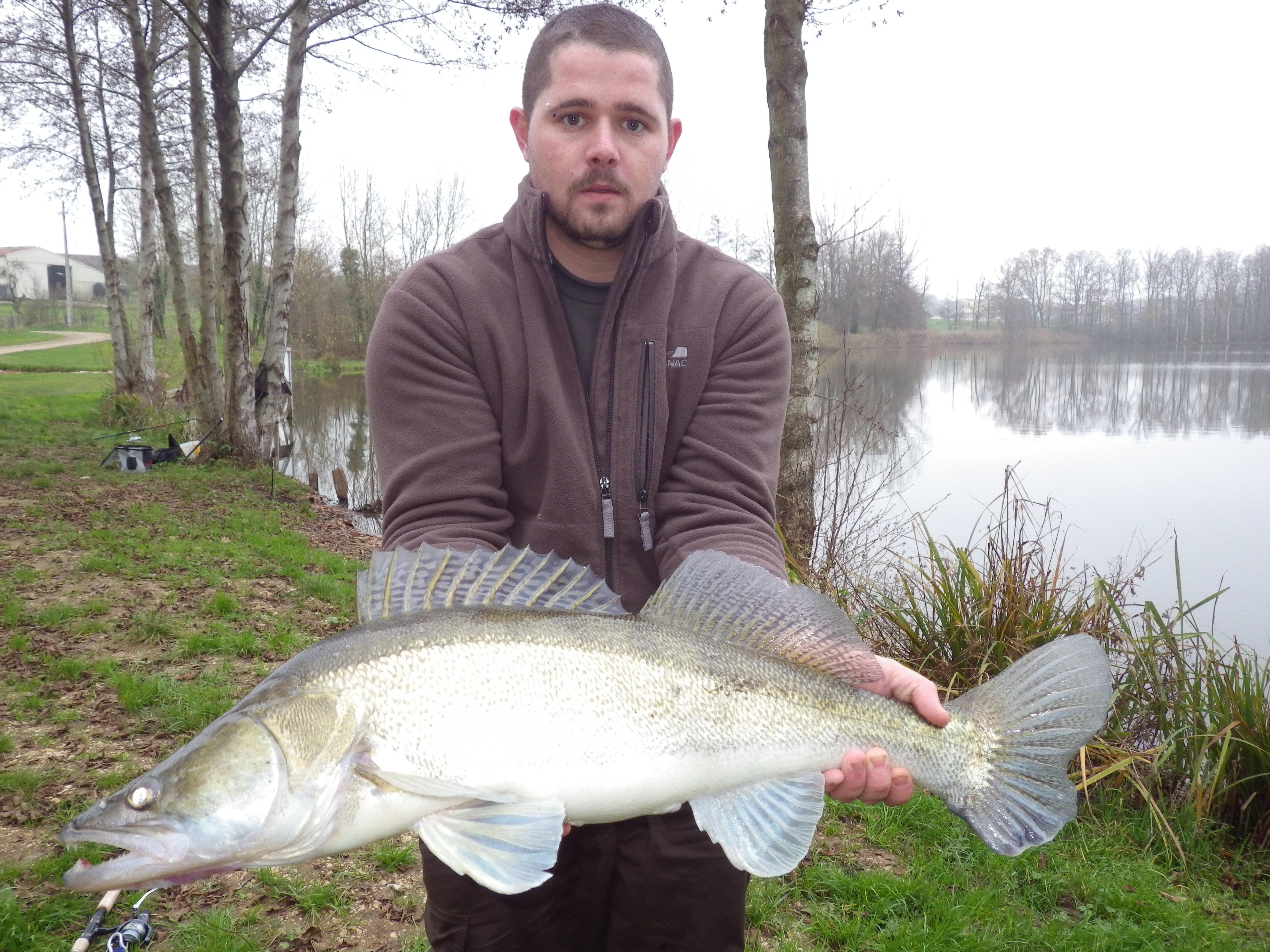 IMGP1691 stage de pêche dans le Grand Est