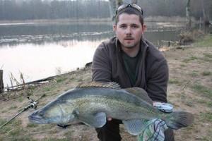 sandre 80 300x200 Nouvelle session de pêche au Domaine de pêche du grand étang de Pêche