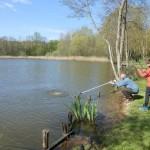 unnamed 15 150x150 Initiation de la pêche du brochet