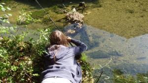 IMGP2057 300x169 Camp de pêche de la truite jeune et ados en Champagne