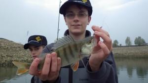 IMGP2663 300x169 Stage pêche carnassier jeune au lac du Der