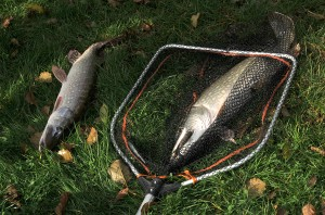 151030 GE 10 pf 300x198 Séjour de pêche à la Toussaint pour jeunes et ados, acte 2