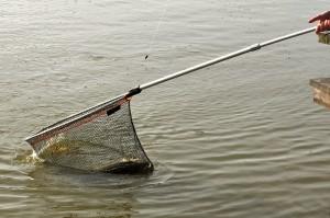 151030 GE 9 pf 300x199 Séjour de pêche à la Toussaint pour jeunes et ados, acte 2