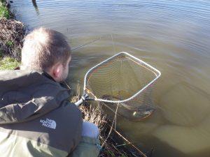 IMGP2917 300x225 Initiation de la pêche du brochet aux leurres