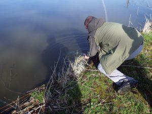 IMGP2922 300x225 Initiation de la pêche du brochet aux leurres