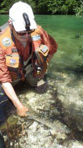IMGP3072 e1468141997903 169x300 Voyage de pêche en Slovénie