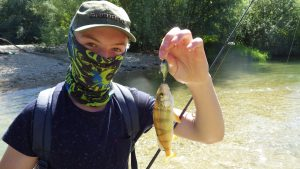 IMGP3254 300x169 Colonie de pêche sur les lacs de la forêt dOrient