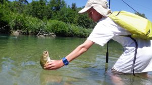 IMGP3271 300x169 Colonie de pêche sur les lacs de la forêt dOrient