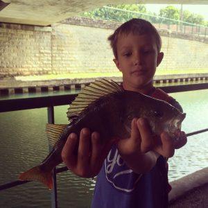 IMG 1555 300x300 stage de pêche pour jeune