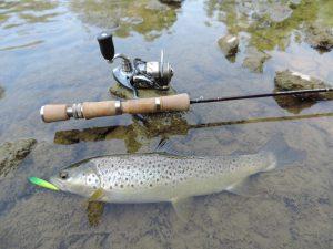 DSCN1444 1 300x225 Pêche de la truite à ultra léger aux leurres