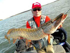 74664533 592625418144313 4781582391942578176 n 300x225 Séjour de pêche au Lac du Der Chantecoq