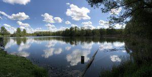 panorama étang avril 2020 300x153 Moment de pêche